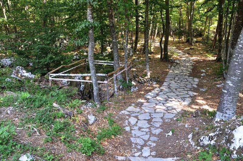 Šaranova jama i Jadovno su lažna stratišta