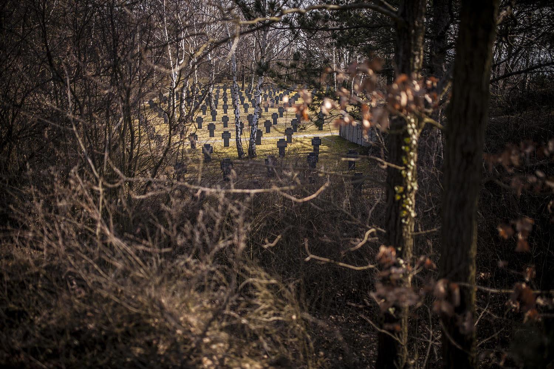 Groblje Austrija1