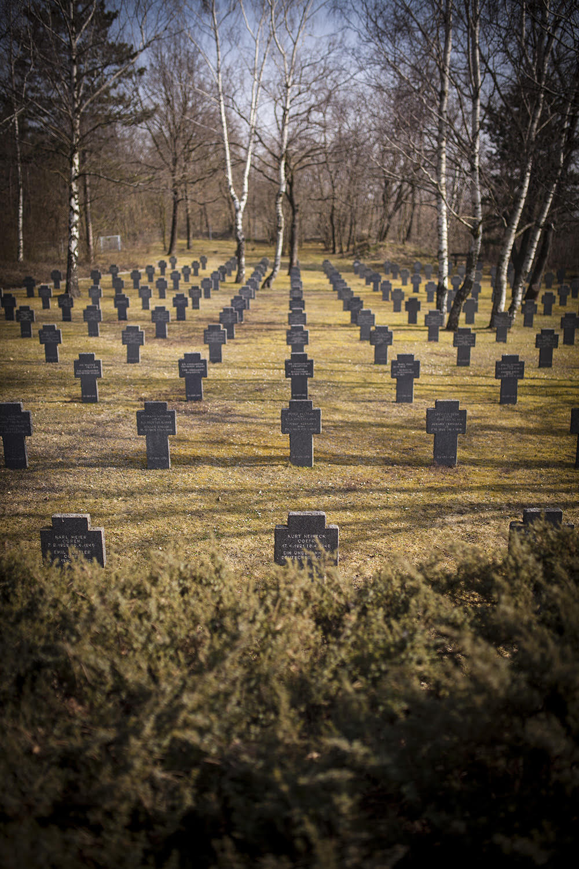 Groblje Austrija3