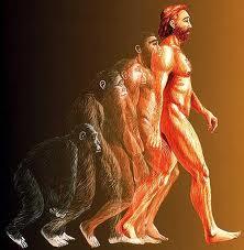 evolucija