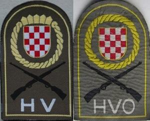 HV HVo